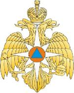 THE MINISTRY OF THE RUSSIAN FEDERATION FOR CIVIL DEFENCE, EMEGRENCIES AND ELIMINATION OF CONSEQUENCES OF NATURAL DISASTERS (EMERCOM OF RUSSIA)